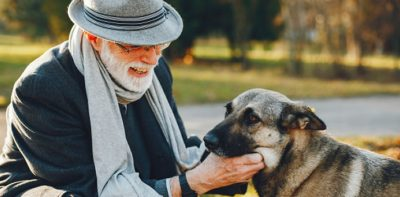 Pet Care for Senior Dogs